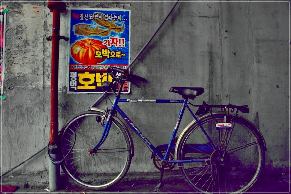 자전거와 호박나이트 포스터